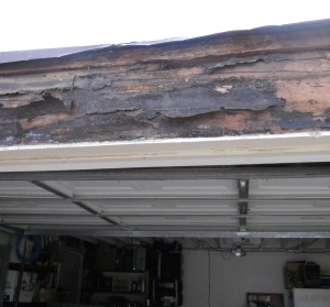 dealing with wood rot